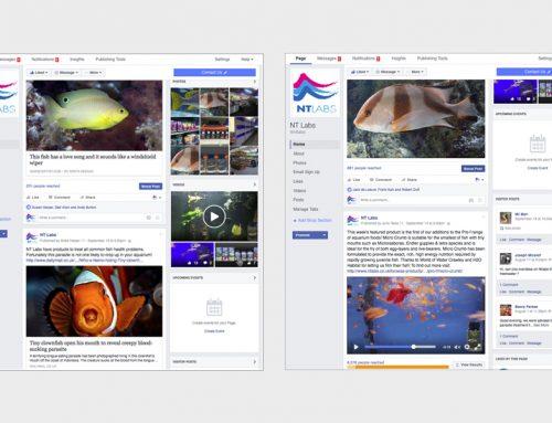 NT Labs – social media